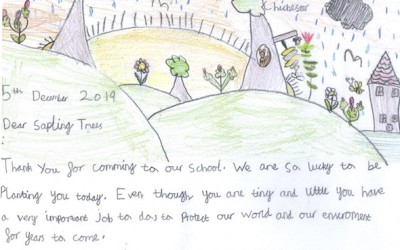 Letter to the trees by the Pre-Prep