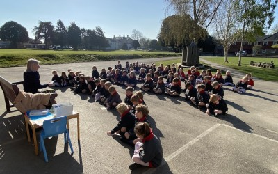 Outdoor celebration assembly